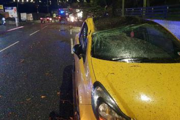 Lucky escape after storm plunges treeon to the roof of moving car